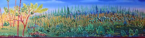 steph wide landscape
